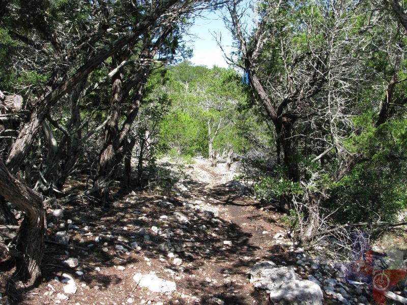San Antonio Jeep >> MountainBikeTx.com   Trails   Hill Country   Camp Eagle