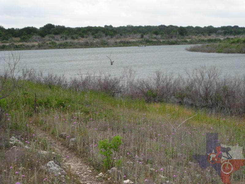 Trails hill country lake for Lake georgetown fishing