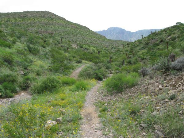 Mountainbiketx Com Trails Big Bend Country Franklin